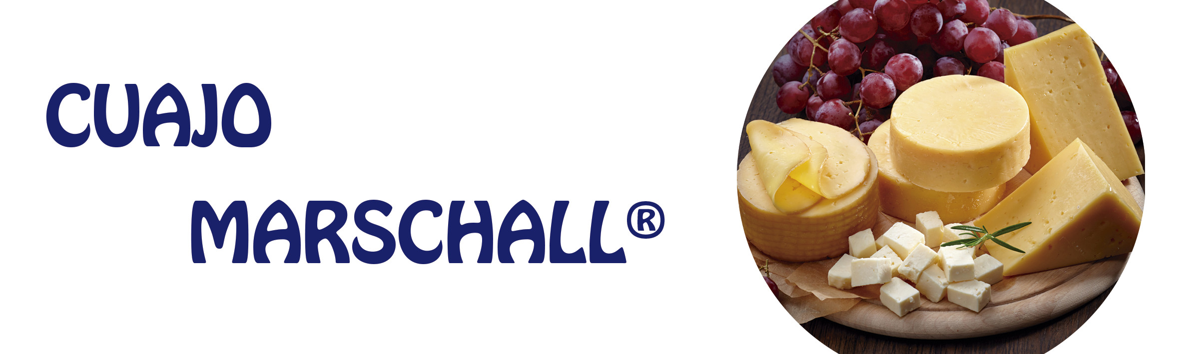 cuajo marschall mundo químico guatemala