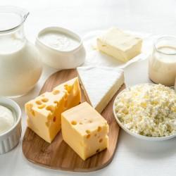 queso yogurt leche cultivos lácticos
